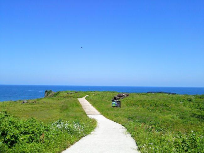 隆起してできた海岸段丘 すぐ向こうは断崖