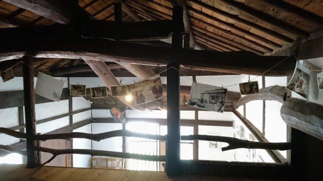 2階の展示は「どうやってオギノトリコができたのか」というストーリー