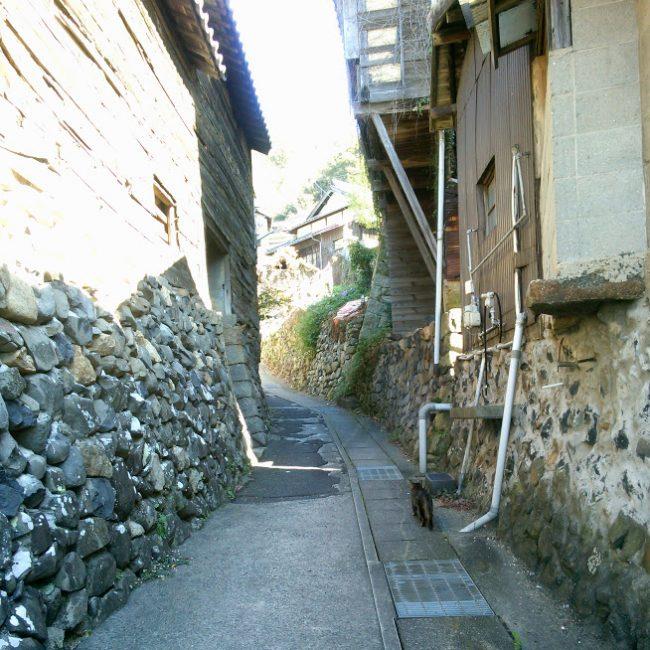 島の集落の中は狭い坂道だらけ たまに猫が道案内してくれます